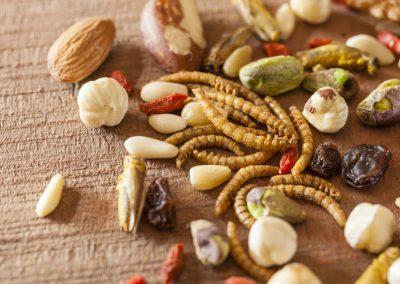 Meelwormen, het nieuwe superfood met vitamine D?