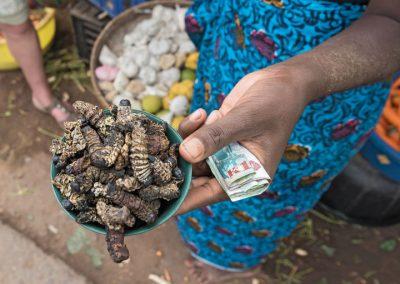 Insecten eten helpt tegen honger en overgewicht